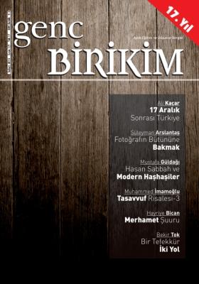 Genc_Birikim_Subat_2013_Sayi_177