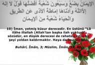 haya_imandandir